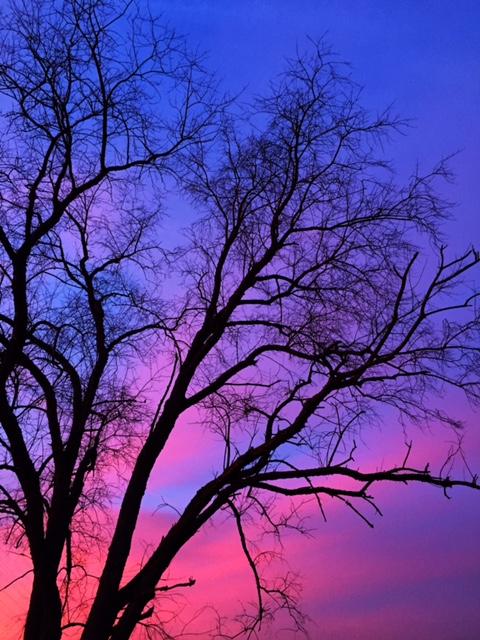 Spring Sunset, 2015